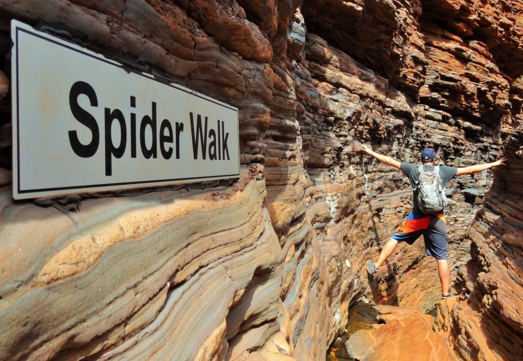 Spider Walk
