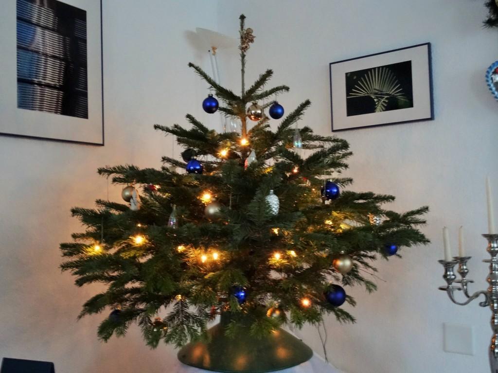 Bei dieser Schönheit kann der Weihnachtsbaum in Singapur gleich einpacken...