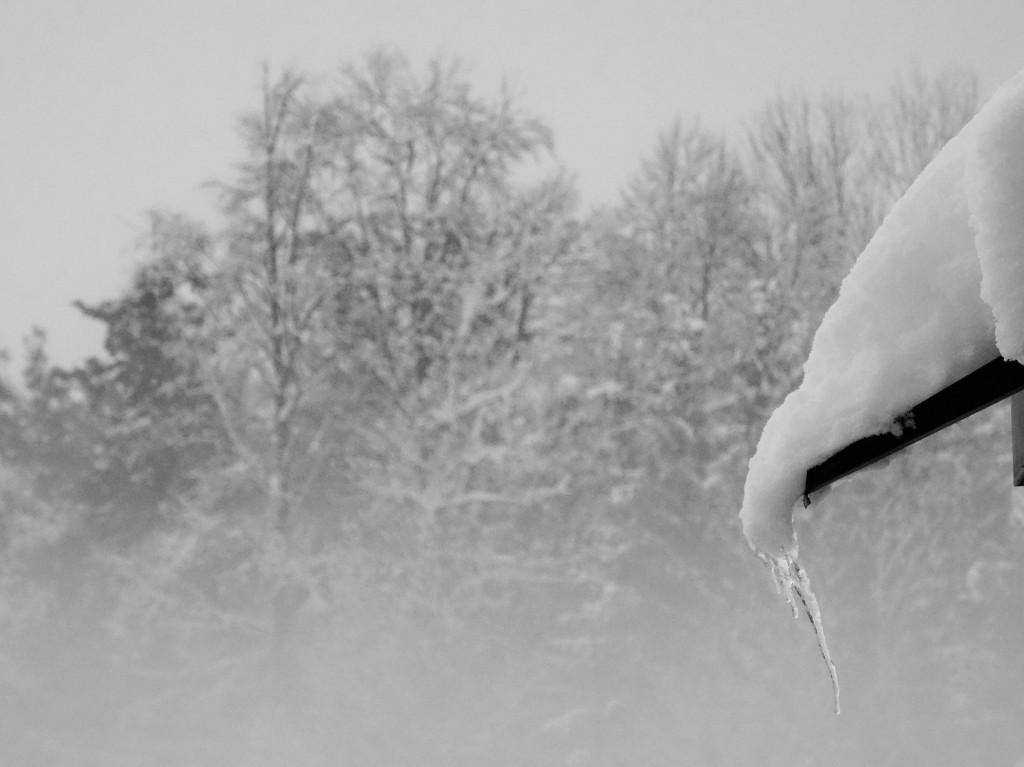 Brrr.... Sau kalt in der Schweiz... Sind wir uns gar nicht mehr gewohnt...