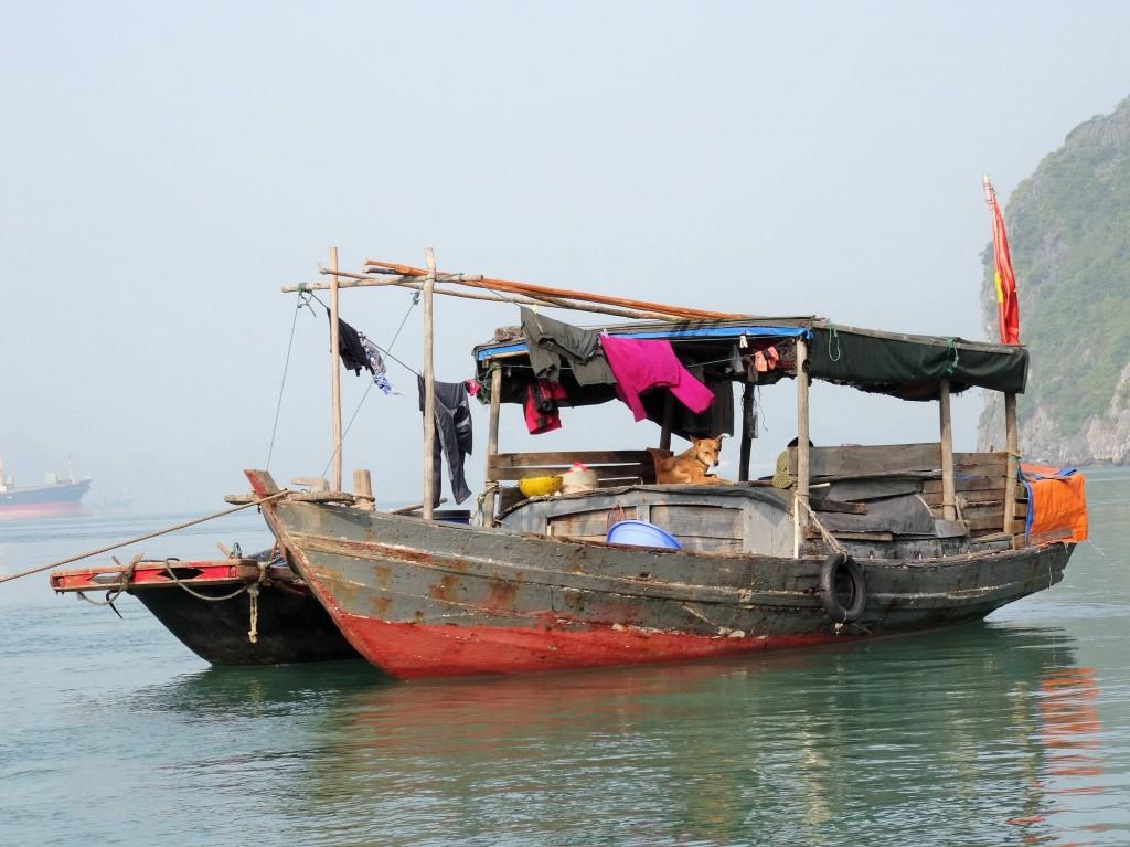 Fischerboot mit Fischerhund