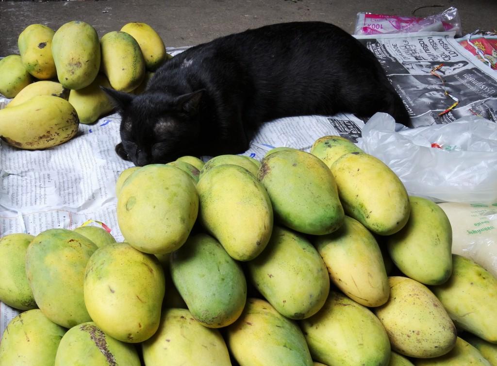 ... und Früchte ....